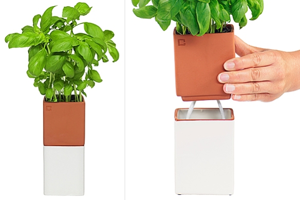Evergreen Herb -- Self-Watering Planter by Marita Lord of Cult Design