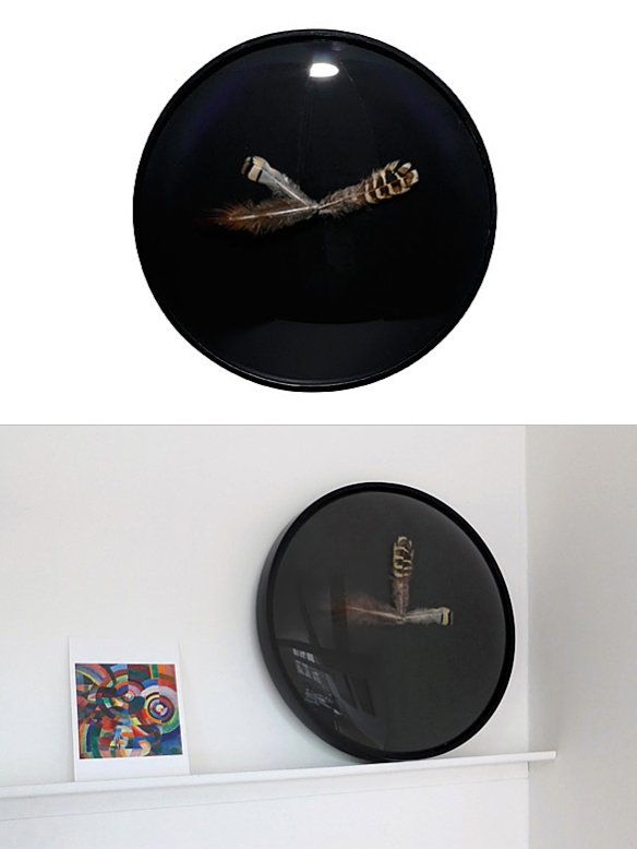 Feather Clock by Marie-Aurore Stiker-Metral | moddea